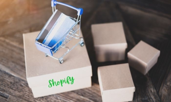 6 Easy Ways Shopify Beginners Can Gain More Organic Traffic