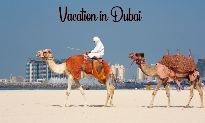 A Foolproof Way to Enjoy Your Vacation in Dubai